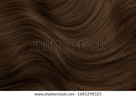Brunette or brown hair. Female long dark hair in black. Beautifully laid curls. Closeup texture in a dark key. Hairdressing, hair care and coloring. Shading gray hair. Background with copy space. Stock photo ©