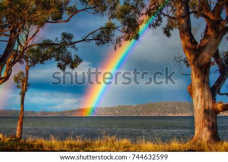 Brunny Island Rainbow