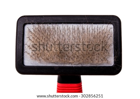 Brush, Pet Grooming Brush, Wire Comb for Dog, Cat, Rabbit or Others Pet. Used with Hair, Fur. Close up, Isolated on White Background.