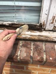 Brushing rotten wood with wood hardener