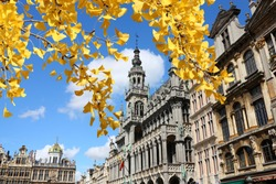 Brussels, Belgium - landmark building: Maison du Roi (The King's House or Het Broodhuis). Located on Grand Place. Autumn tree color.