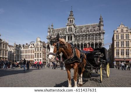 brussels  belgium  24 march...
