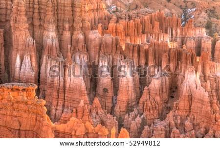 Bryce Canyon Hoodoos at Dawn