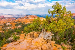 Bryce canyon landscape in Utah