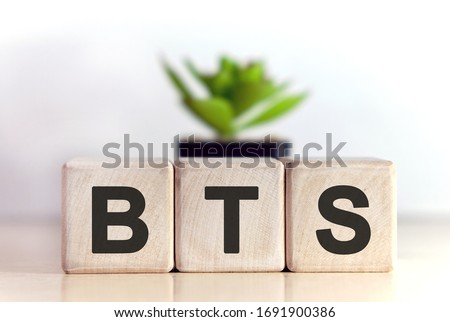 BTS concept on wooden cubes and flower in a pot in the background Stock fotó ©