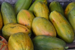 Buah pepaya - papaya fruit is one of the local fruits that are often found in shops and traditional markets in Indonesia