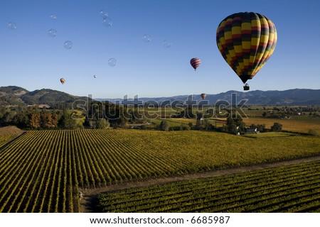 Bubbles over Vineyards
