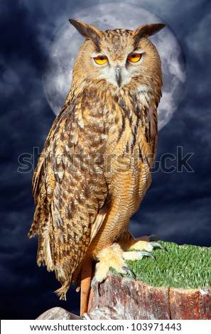Bubo bubo eagle owl night bird in full moon cloudy dramatic night [ photo-illustration]
