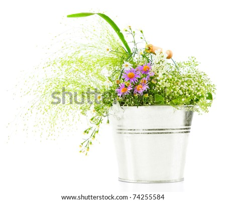 Bucket of spring fresh wild flowers isolated on white background
