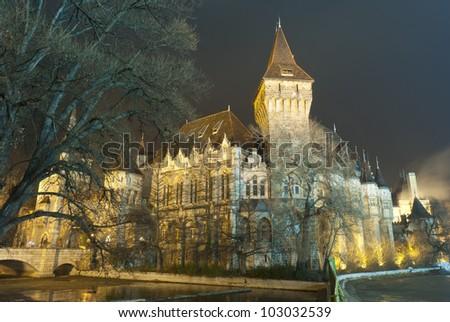 Budapest by night: Vajdahunyad castle