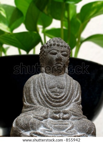 Buddha against a blurred background