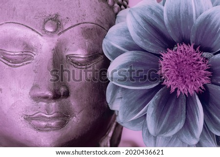Buddha face and flower. Spiritual meditation and Zen buddhism nature image. Close up of a serene buddha head statue with a blue and pink tone lotus type flower in bloom. Calming peaceful modern design