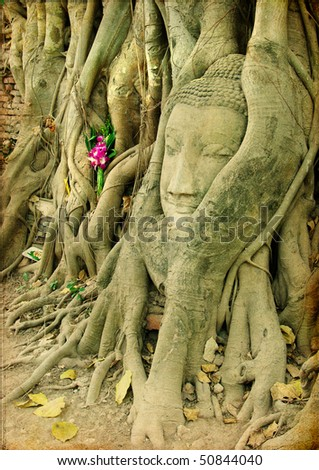 Buddha face in roots - ancient Ayutthaya