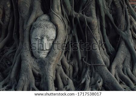 Buddha head in tree roots in Ayuthaya , Thailand Stock fotó ©