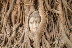 buddha head traped in the tree roots - Ayutthaya - Thailand