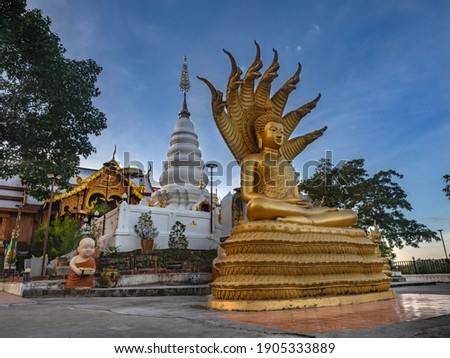 """Buddha image with a naga and a pagoda of Buddha's relics at Wat Phra That Doi Leng in Phrae Province, Northern of Thailand. Buddha with Naga Statue called """"Nak Prok"""" is a format of Buddha image."""