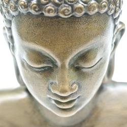 Buddha portrait isolated on white