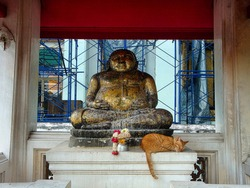 Buddha sculpture with sleepy cat and flowers.