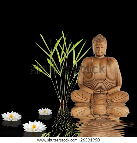 Buddha sitting in an abstract zen garden with bamboo leaf grass and white japanese lotus lily flowers with reflection in rippled water, over black background.