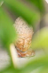 Buddha Statue in Green Tropical Leaves