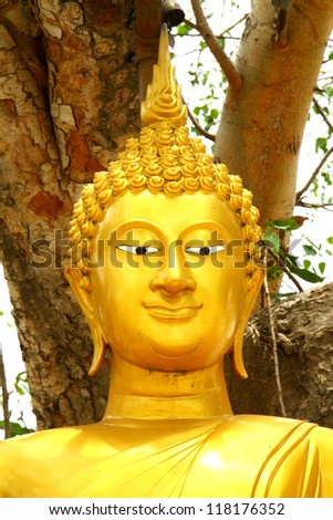 Buddha statue on tree background.