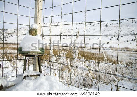 Buddha Statue Wrapped in a Blanket of Snow Against a Fence.