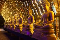 Buddha statues at the Seema Malaka buddhist temple on Beira Lake,  Colombo, Sri Lanka. Seema Malaka is a part of Gangaramaya Temple.