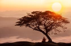 Buddhist monk in meditation under the tree at beautiful sunset or sunrise background