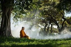 Buddhist monk meditating under a tree at Ayutthaya,buddhist temple  in Thailand