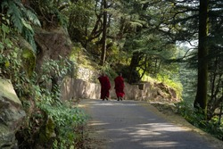Buddhist monk walking in Dharmasala a small village in northern India