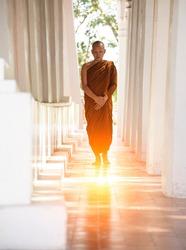 Buddhist monks vipassana meditate to calm the mind. The brain will refresh the secretion of Indoine. Make happy
