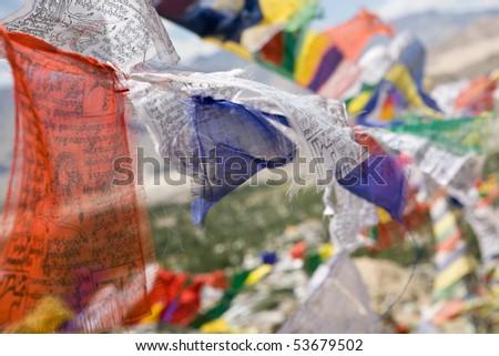 Buddhist prayer flags, Ladakh