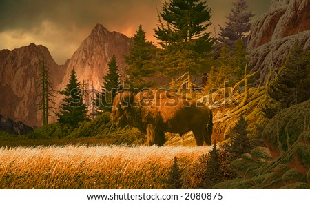 Buffalo in the Rocky Mountains/Image from an original 17x28 painting./SW-009
