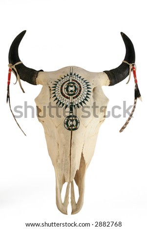 Buffalo skull isolated with clipping path