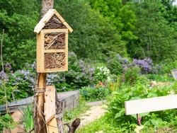 Bug hotels in a garden, a shelter for pollinators, closeup with selective focus and copy space
