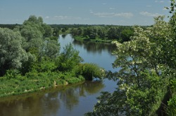 Bug River. Poland wschodnia.Dolina river with trees growing on the shore.