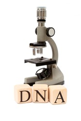 Building Blocks on White spelling out DNA with microscope