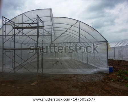building the big greenhouse for Cultivation tomatoes. structure greenhouse  for planting or growing vegetables in tropical climate.  greenhouse is protects vegetables form insects.  #1475032577