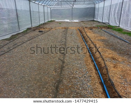 building the watering system in big greenhouse for Cultivation tomatoes. structure greenhouse for planting or growing vegetables in tropical climate. greenhouse is protects vegetables form insects. #1477429415
