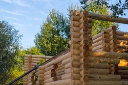 Building wooden cottage of balk wall