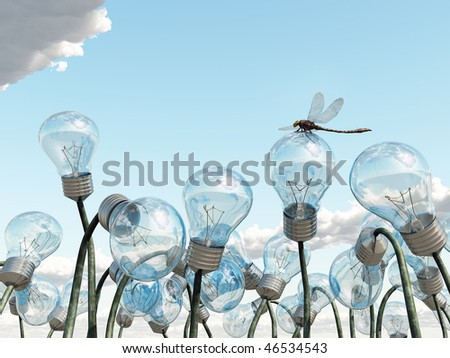 bulb field - stock photo