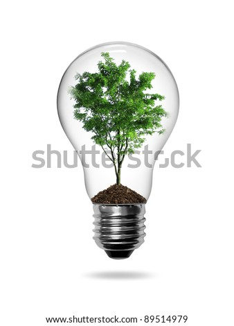 Bulb light with green tree inside isolated on white background
