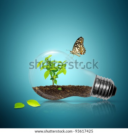 Bulb light with tree inside and leaf have butterfly