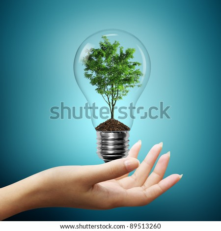 Bulb light with tree inside on woman hand