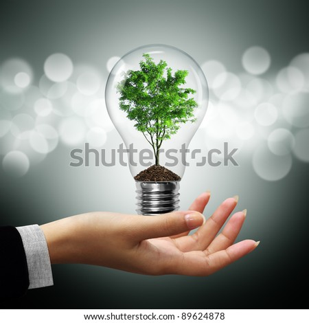 Bulb light with tree inside on woman hand on gray bokeh background