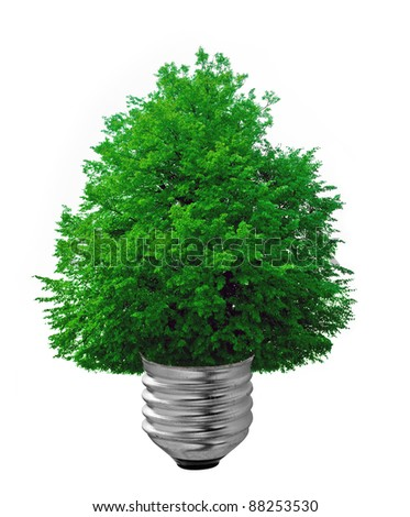 bulb on a white background
