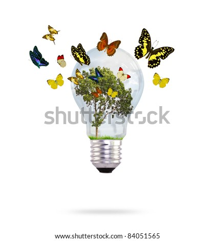 Bulb with tree and butterfly