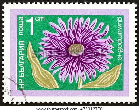 bulgaria   circa 1974  a stamp...