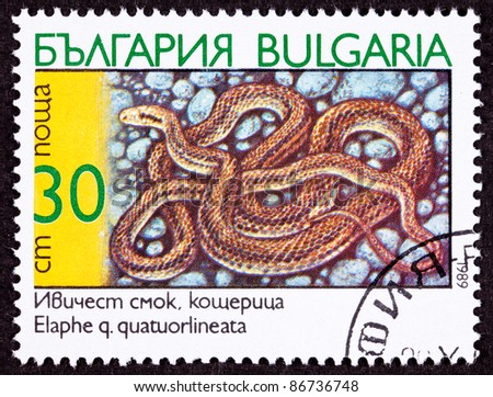 BULGARIA - CIRCA 1989:  A stamp printed in Bulgaria shows a coiled Four-Lined Rat Snake, Elaphe quatuorlineata, circa 1989.
