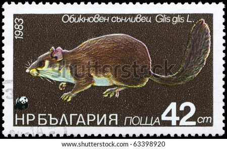 "BULGARIA - CIRCA 1983: A Stamp printed in BULGARIA shows image of a Dormouse with the description ""Glis glis"" from the series ""Various bats and rodents"", circa 1983"